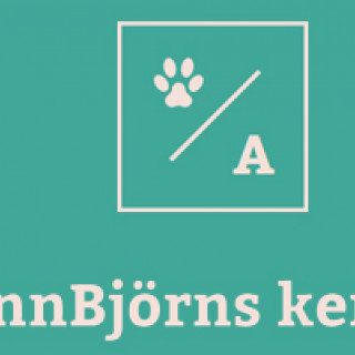 AnnBjörns kennel